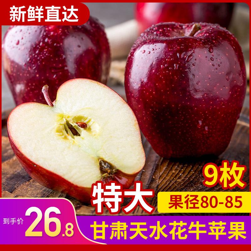 天水花牛苹果 特大应季新鲜现摘苹果高甜度大果甘肃原产地水果9枚图片