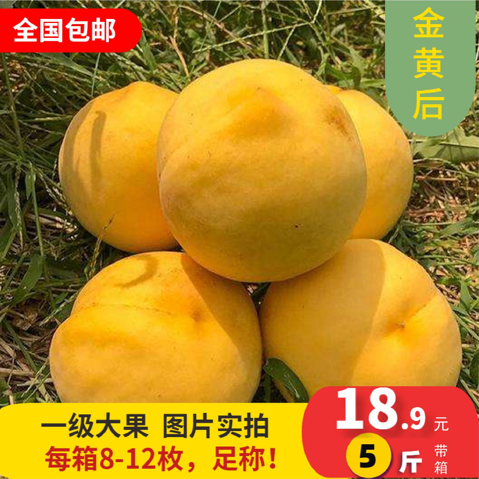 鲜甜新鲜桃子现摘黄桃现摘现发5斤保证新鲜坏果包赔02XZ