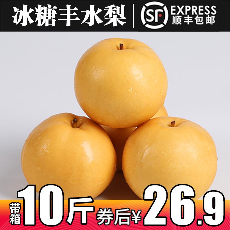 梨子秋月梨新鲜10斤包邮当季新鲜水果现摘黄花梨圆黄梨雪梨丰水梨