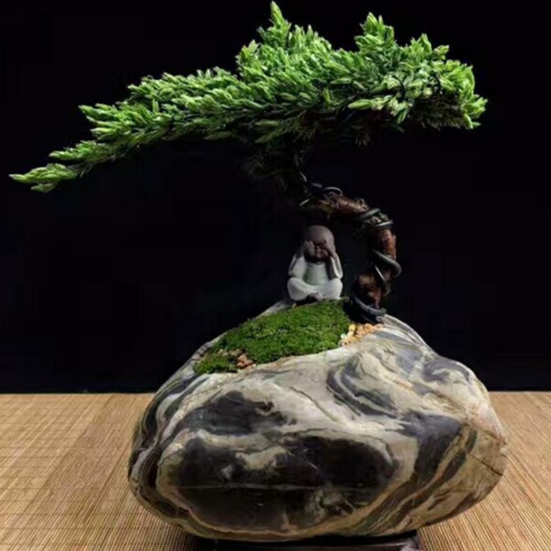 领劵下单只要8.8元 天然石头花盆九龙壁鹅卵石菖蒲多肉植物石头盆