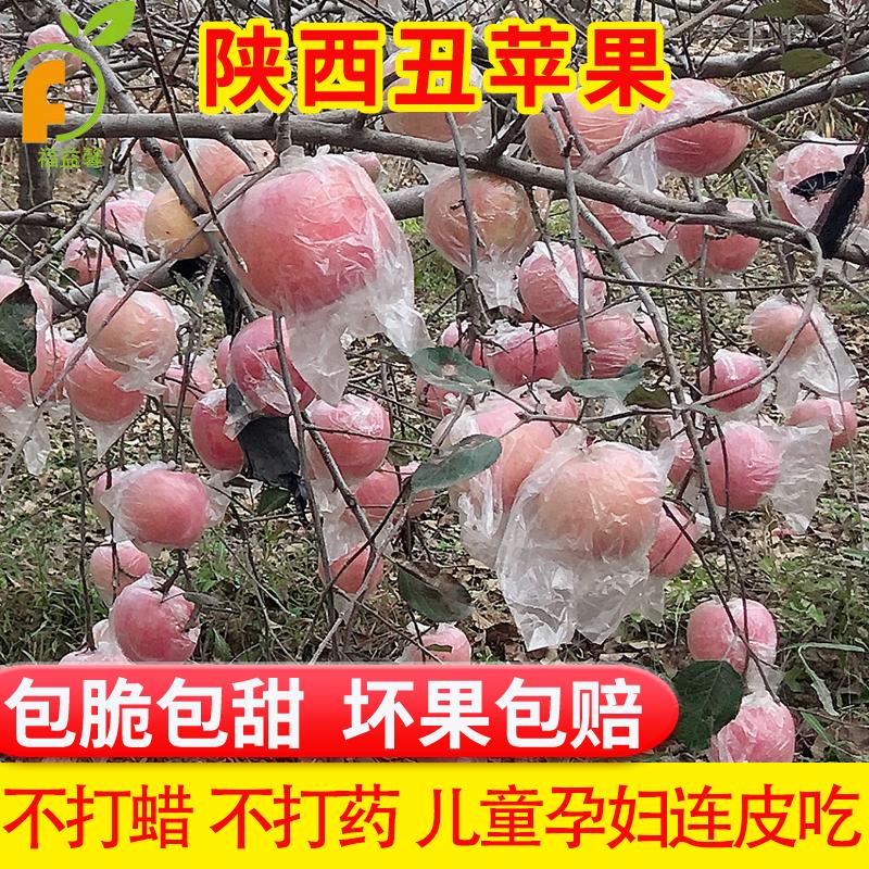 【福益馨】陕西红富士丑苹果当季新鲜水果10斤带箱包邮批非冰糖心