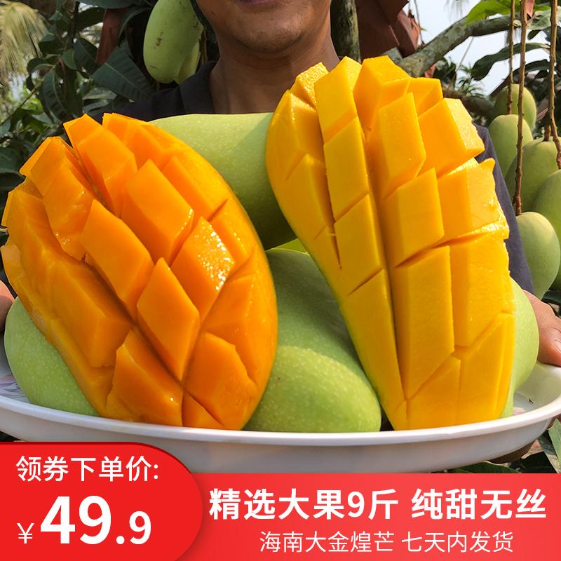 海南三亚金煌芒水仙芒新鲜水果大芒果9斤 净果包邮金皇芒大果纯甜