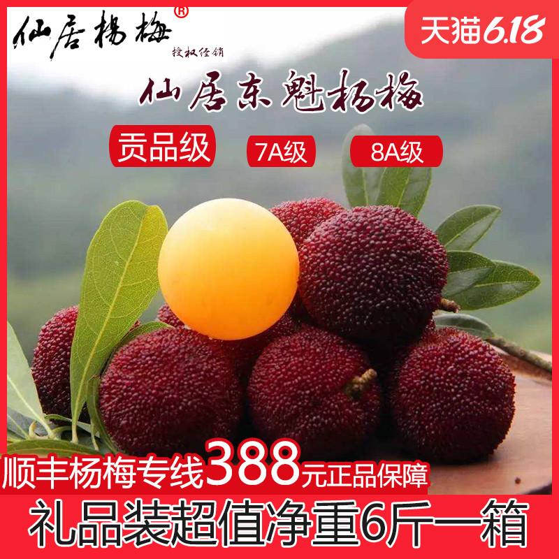 {贡品级}品牌直供仙居东魁杨梅特大6斤净浙江台州产当季新鲜水果