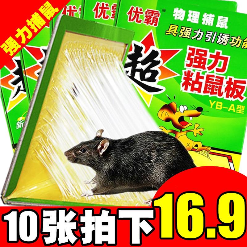 10张粘鼠板超强力粘板胶抓大老鼠贴夹笼药驱灭老鼠家用灭鼠捕鼠器