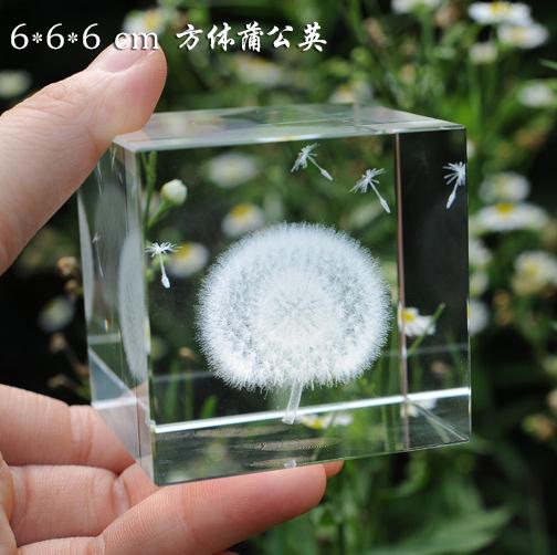 蒲公英标本生日520情人节礼物水晶球摆件送男女朋友老婆同学闺蜜