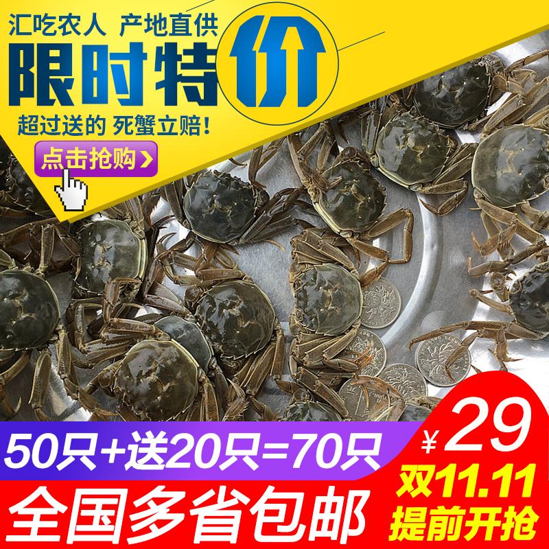 现货1一元蟹小螃蟹鲜活醉蟹苗闸蟹毛蟹二龄蟹老头蟹香辣蟹河蟹