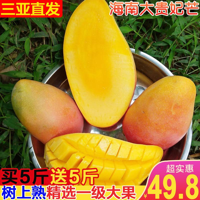 精选树上熟海南三亚贵妃芒10斤新鲜当季水果红金龙非台农芒果包邮