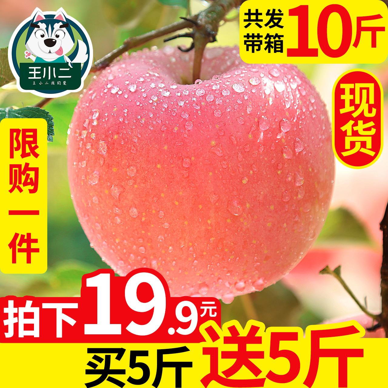 【买1送1】苹果水果新鲜应季带箱10斤当季整箱红富士丑青苹果嘎啦