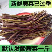 酸蕨菜现qi1摘包邮贵go山野菜龙爪菜干货农家野生蕨苔500g