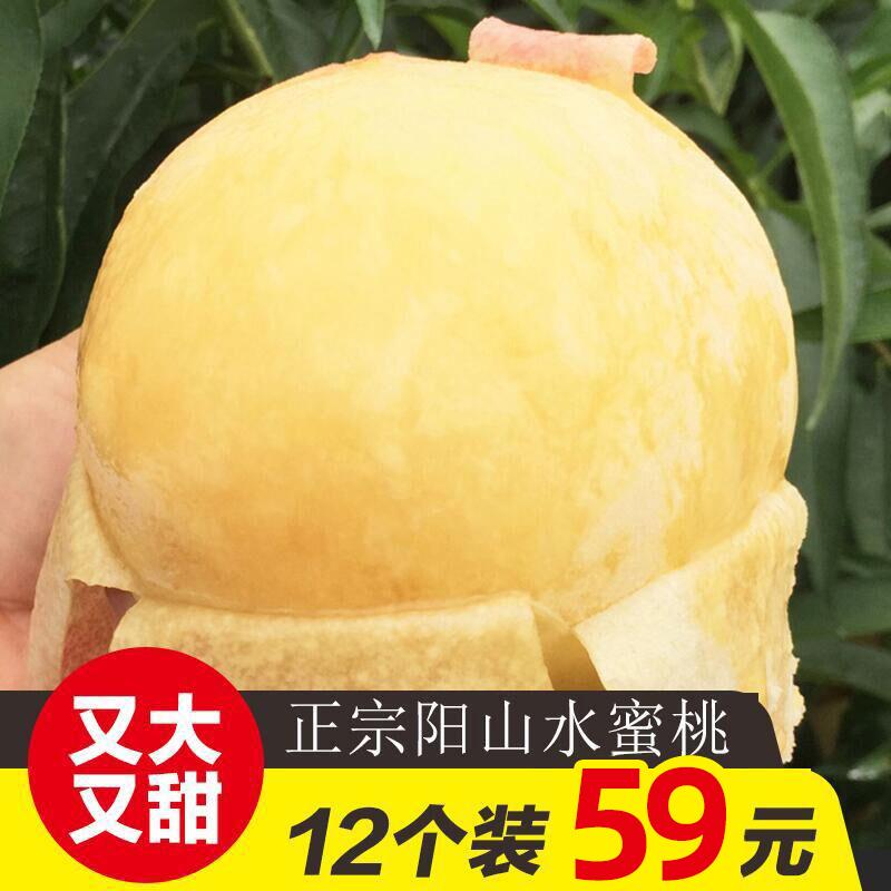 正宗无锡阳山水蜜桃新鲜桃子5两12个礼盒装当季孕妇水果现摘现发