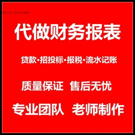 代做企业财务报表招投标银行贷款申报税年检资产负债利润表状况表
