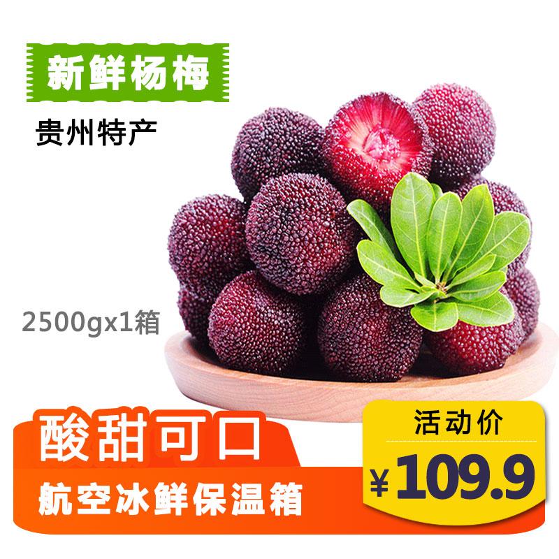 贵州紫云杨梅水果新鲜个大酸甜杨梅现摘现发5斤装一箱包邮