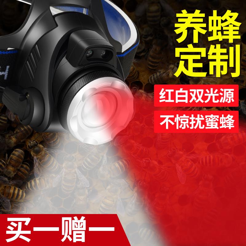 可感应红光头灯专用养蜂查蜂取蜜抓蜂头戴式手电筒调焦红白双光源