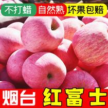 木西果园烟台苹果水果新鲜山东栖霞红富士2.5斤整箱当季批发包邮
