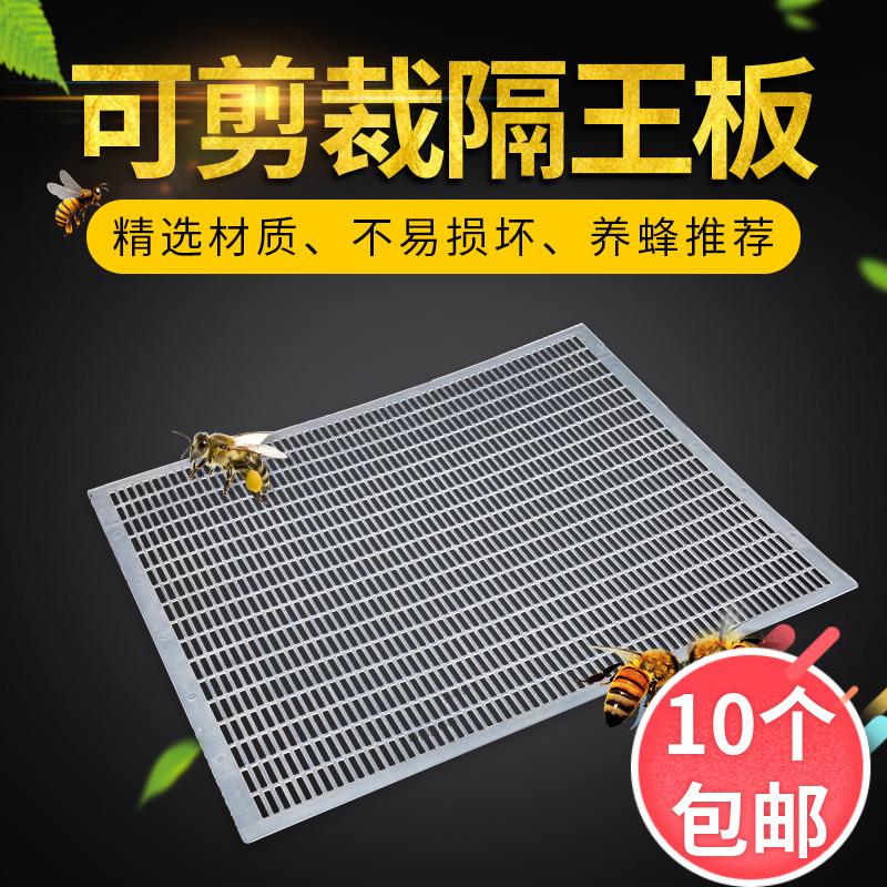 中蜂隔王板可裁剪塑料中蜂意蜂隔王栅全套养蜂专用工具满10个包邮