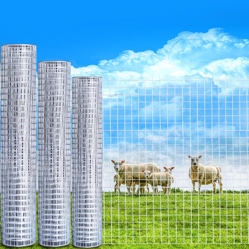 镀锌电焊网铁丝网围栏养殖网钢丝网阳台防护防鼠网拦鸡铁网格网片
