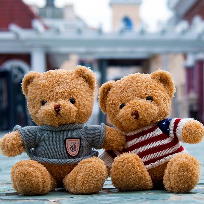 泰迪熊毛绒玩具公仔抱抱熊玩偶熊娃娃布娃娃抱枕大熊女孩生日礼物