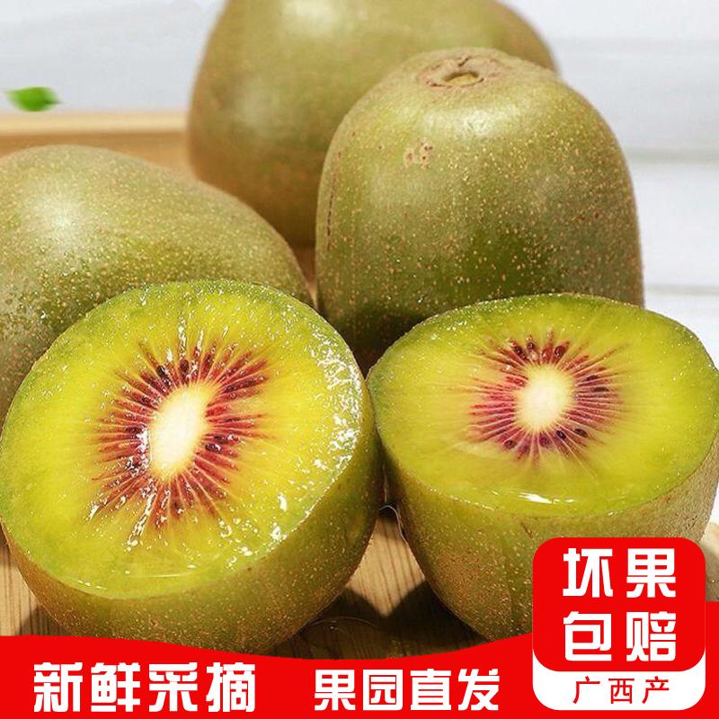 新上市果园直发红心猕猴桃当季新鲜水果送礼佳品口感清甜爽滑包邮