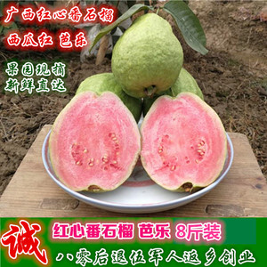 Red Heart Guava 8kg Red Heart Guba Fresh Fruits from Guangxi Watermelon Red Guava