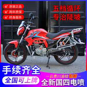 Robinson 150cc National Quad Straddle Motorcycle Vehicle EFI Male Street Car Mountain Force Pulling Goods Can Be Licensed