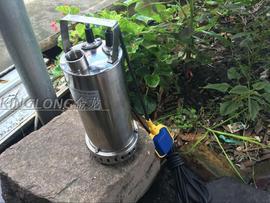 220V不锈钢304潜水泵抽水泵家用高扬程耐酸碱腐蚀喷泉化工花园泵