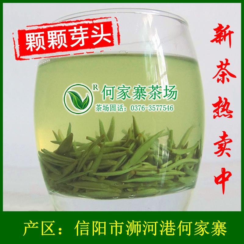 信阳毛尖2017新茶雨前头采嫩芽高山茶叶绿茶散装自产自销春茶250g