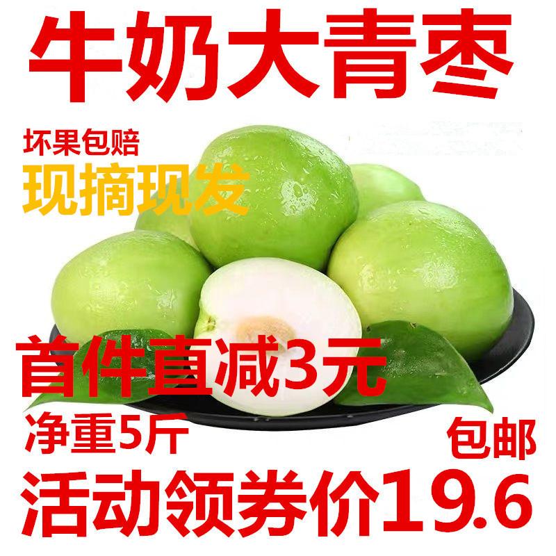 大青枣水果冬枣台湾牛奶大青枣脆枣孕妇牛奶甜枣大枣新鲜包邮 5斤