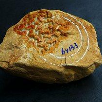 [老坑黄翡] 2.9斤天然A货正品翡翠原石毛料玉石拍卖1481.11g