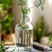 左岸麦田 细口小口玻璃花瓶摆件日本吊钟马醉木插花水培花器客厅