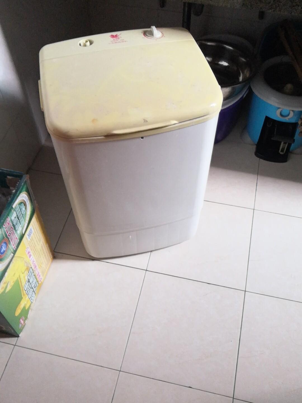 小天鹅洗衣机,单系单筒洗衣机顶开式 迷你洗衣机 Little