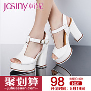 Zhuo Shini 2014 summer styles commuter platform Sandals ultra coarse with strap high heel shoes 142137670