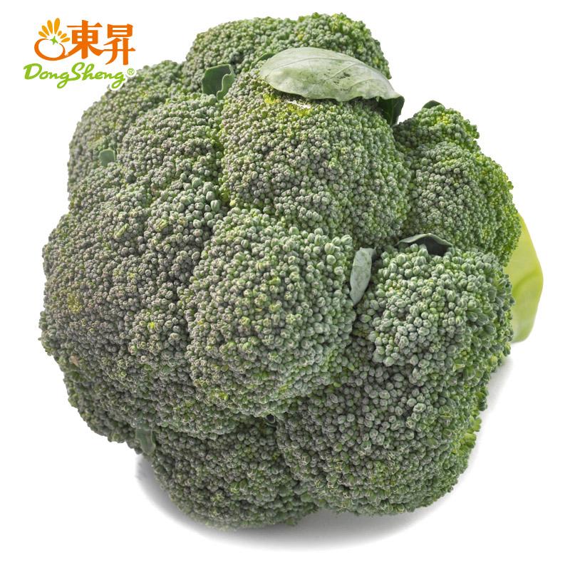东升农场 无公害西兰花 绿花椰菜 花菜 广州蔬菜新鲜配送 500g