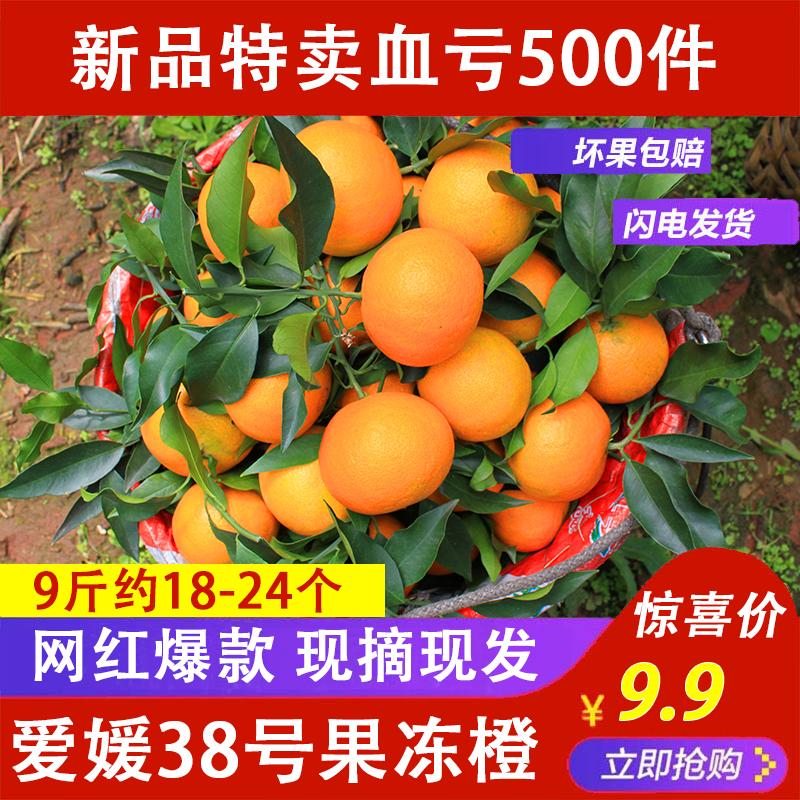 四川爱媛38号果冻橙9斤带箱非不知火耙耙柑现摘现发新鲜水果包邮