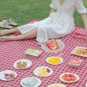 Picnic mat moisture-proof mat outdoor ins wind lawn mat thick mat picnic cloth picnic picnic net red