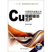 電解銅箔生產/中國有色金屬叢書 金榮濤