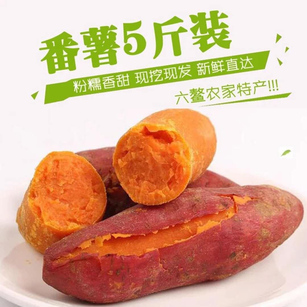 【六鳌粗粮红蜜薯】新鲜红薯现挖现发 沙地红心富硒地瓜5斤包邮