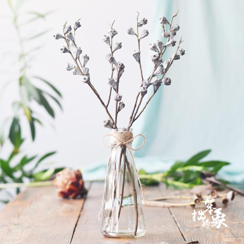 尤加利果大果网红干花花束十字果花瓶带花套装室内北欧小白果真花