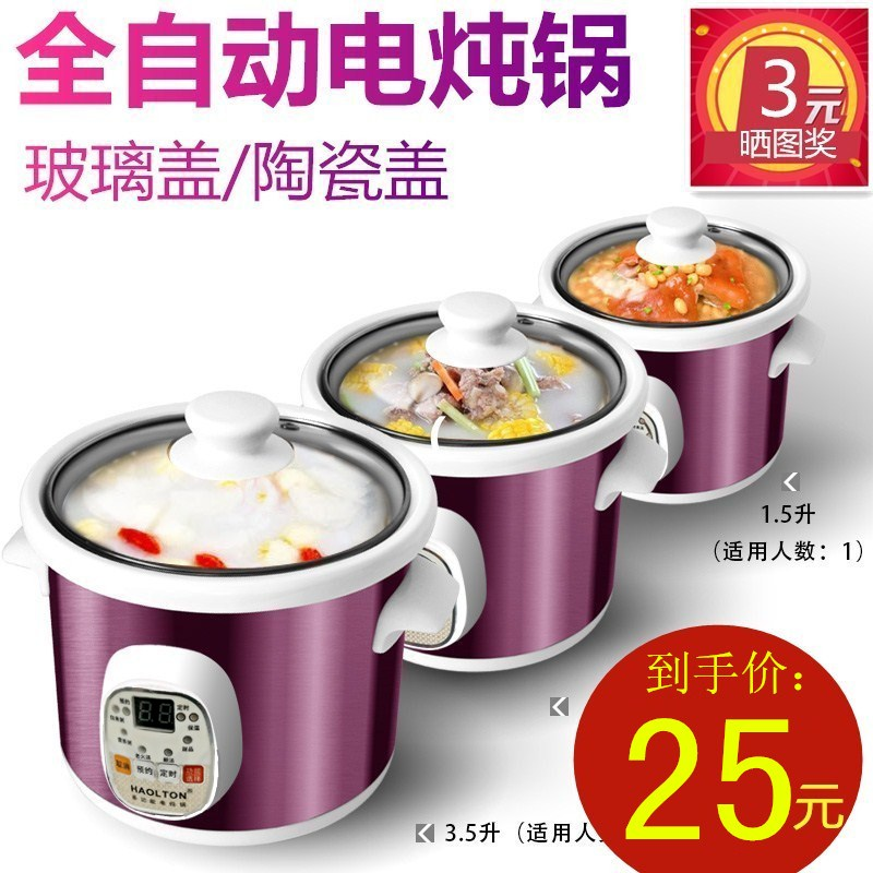 HAOLTON HLT-D25电炖锅煲汤全自动迷你陶瓷小bb紫砂锅电炖盅家用