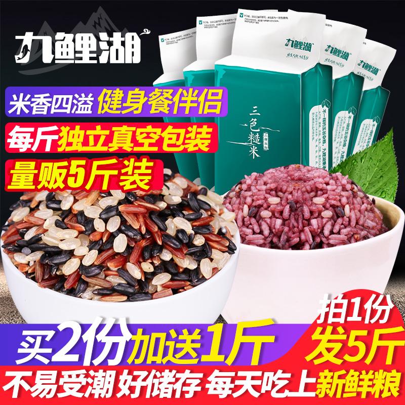 三色糙米新米5斤 五谷杂粮糙米糊黑米红米粥粗粮健身胚芽米脂减饭