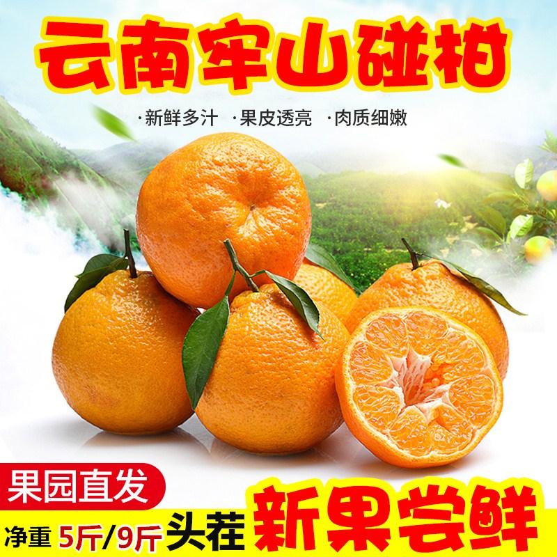 �崭堂坶俪蟀斯珠僮拥奔拘孪仕�果9斤包邮带箱10当季桔子柑桔丑橘