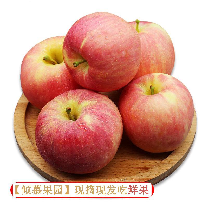 红富士苹果陕西礼泉苹果脆甜多汁鲜果非烟台苹果5斤装包邮