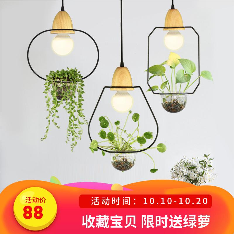 创意水培个性植物小吊灯过道网红餐厅灯绿植阳台吧台服装店橱窗灯