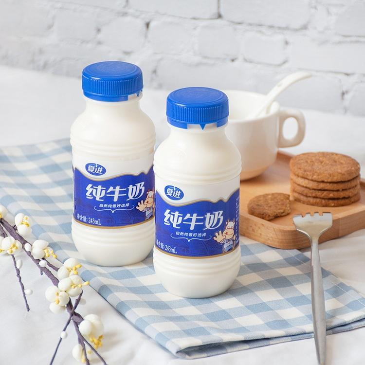 夏进纯牛奶整箱15瓶装243ml营养全脂早餐牛奶成长