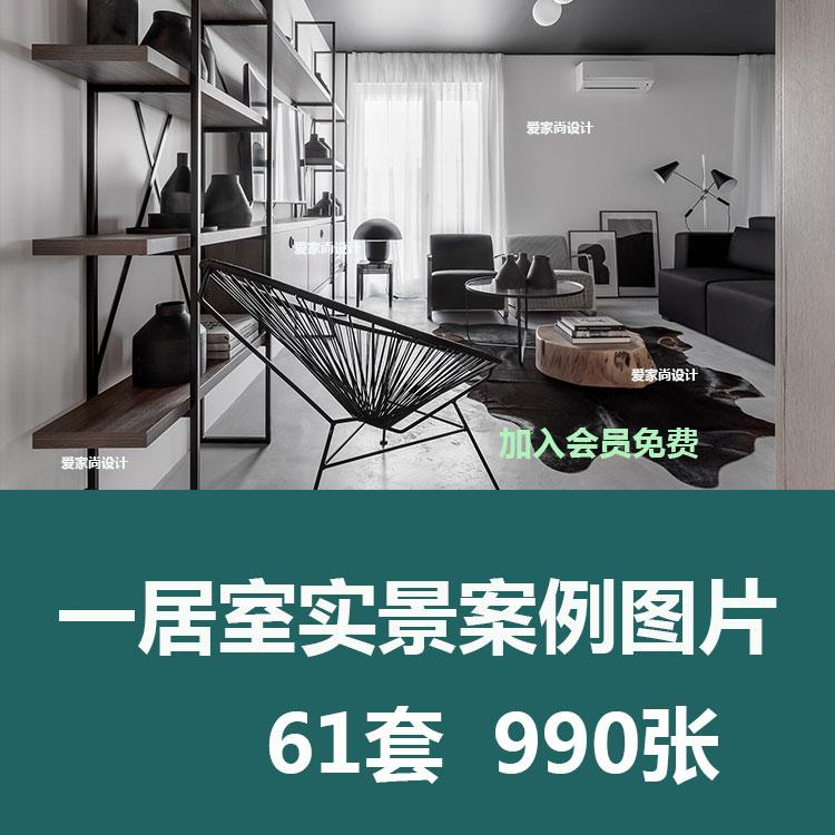 一居室实景案例图片单身公寓大开间小居室客厅卧室布置设计效果图