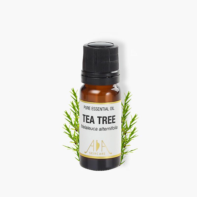 英国AA网 茶树精油香薰气味清新正品进口10ml 净肤控油祛痘