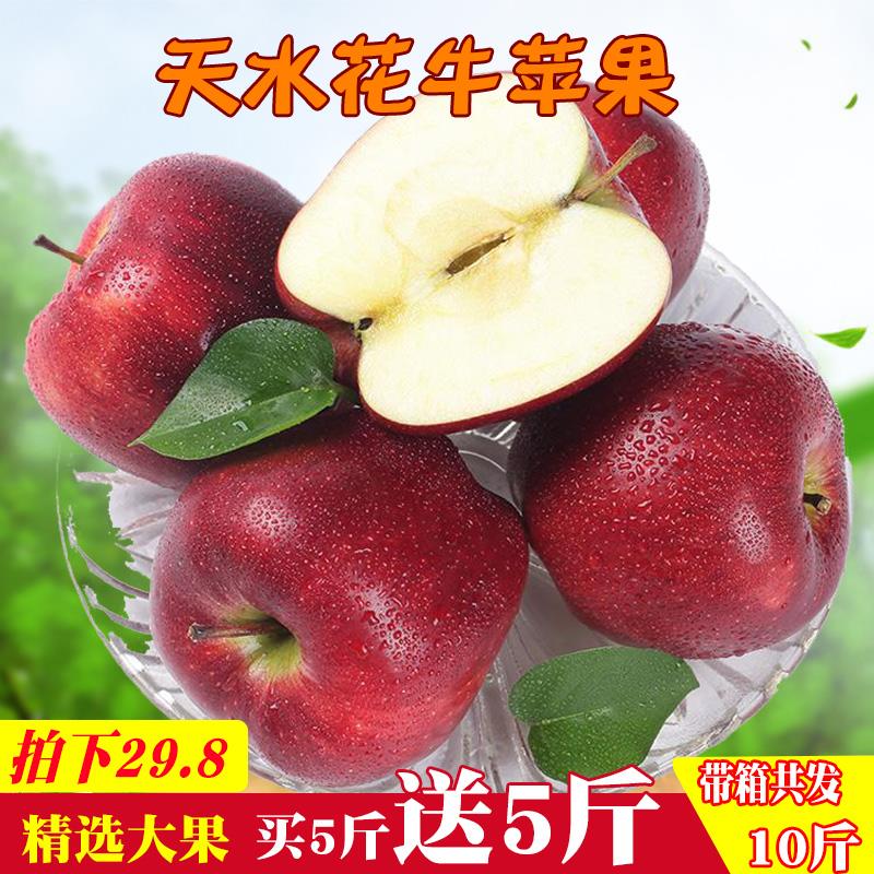 甘肃天水花牛苹果 刮泥 婴儿粉面当季水果新鲜现季蛇果10斤包邮