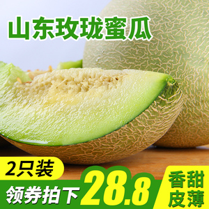 Haiyang Reticulated Melon Melon Melon FCL Fresh Fruit Season Cantaloupe Melon Melon Fresh 2