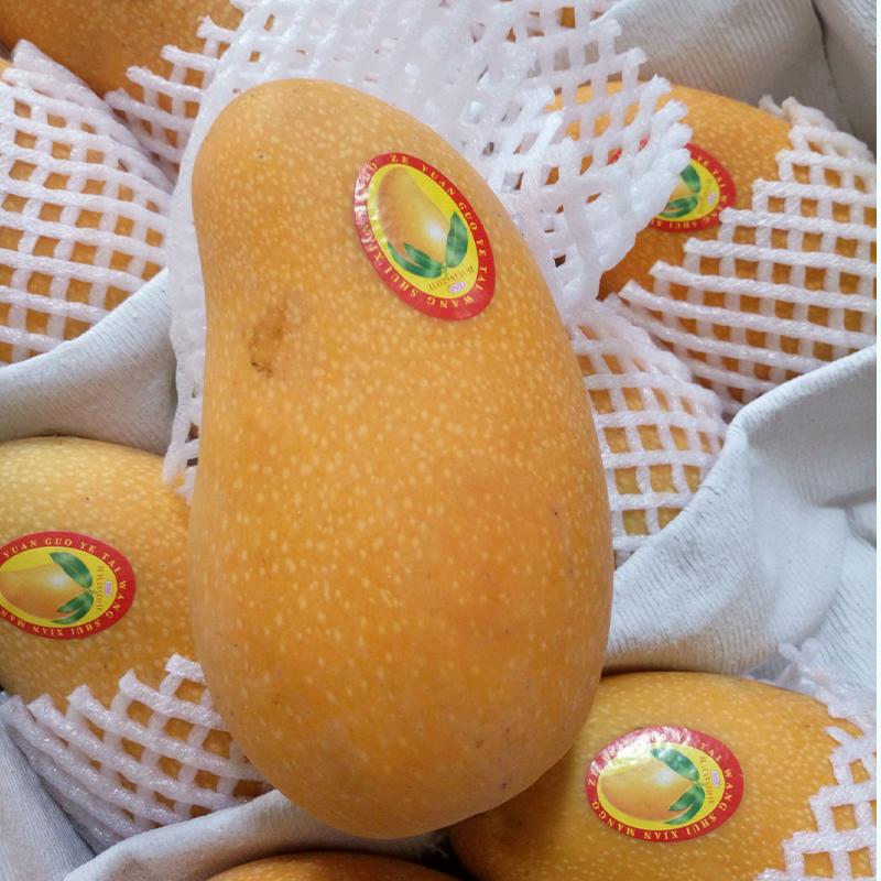 【淘宝助农】海南芒果整箱10斤当季新鲜当季水果应季热带金煌芒