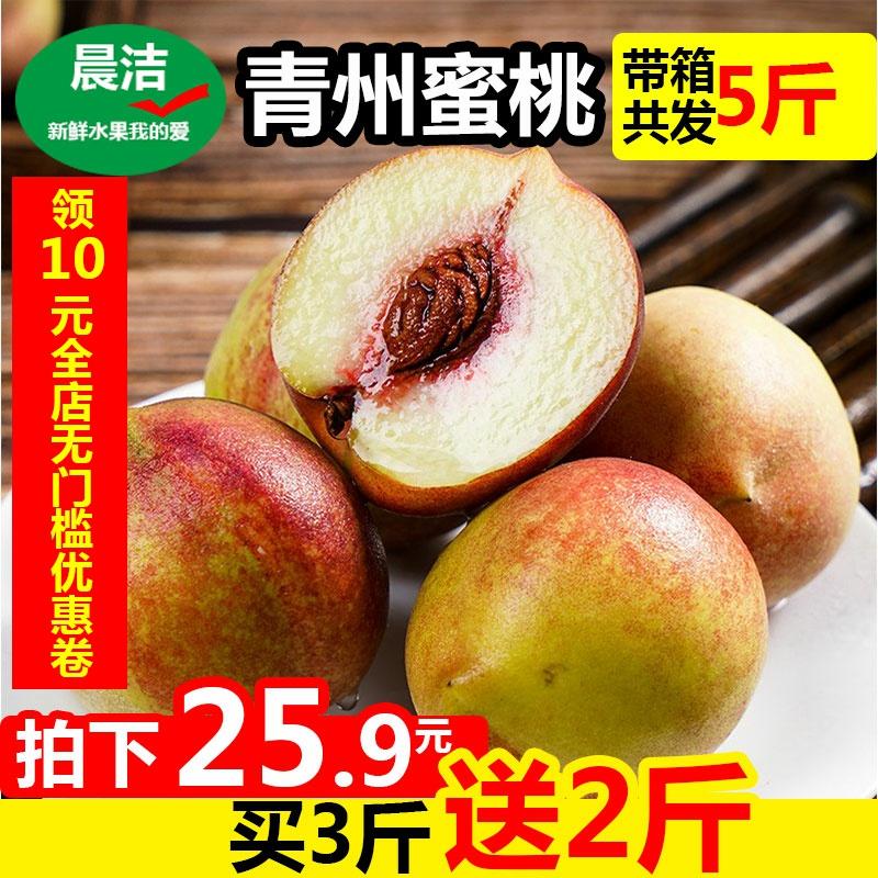 山东青州蜜桃新鲜水果桃子冬雪水蜜桃脆桃小毛桃冬桃带箱5斤现摘