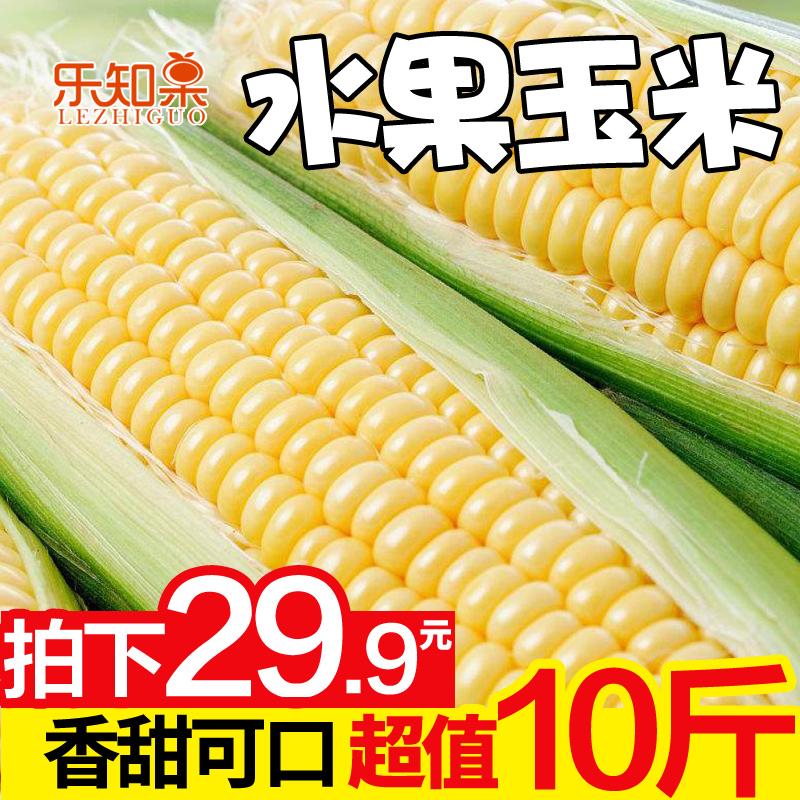 新鲜云南水果甜玉米生吃甜玉米棒子粒粘糯黏苞谷米蔬菜包邮10斤YM